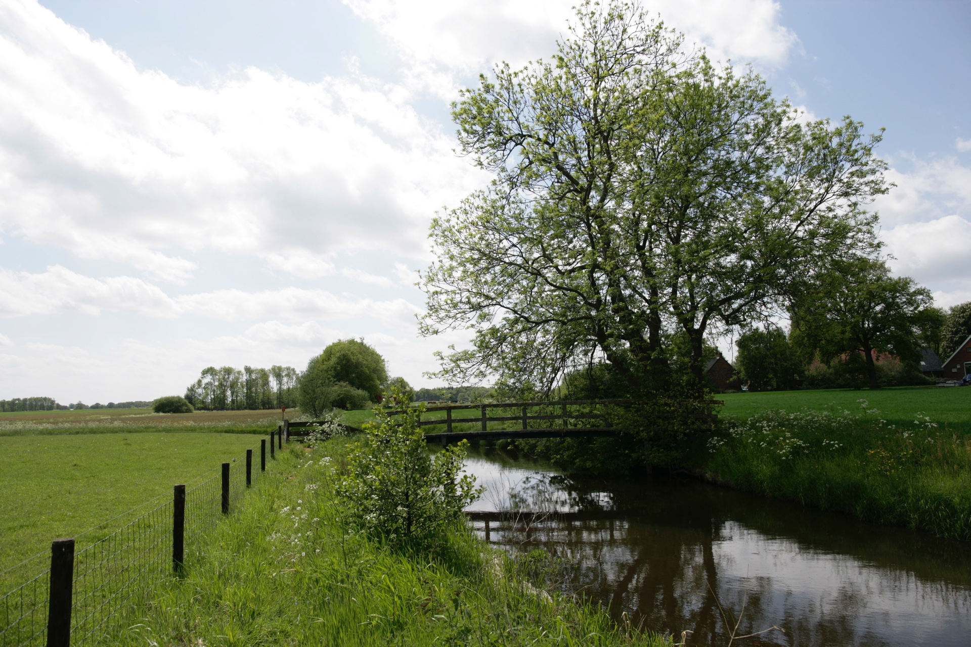 Villa Park Weddermeer Westerwolde Spaziergang durch die Natur